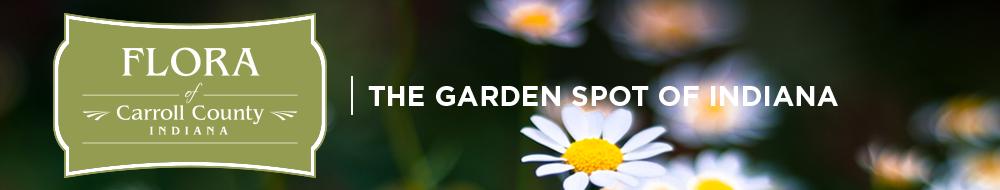 flora-header-new-option1-garden-spot